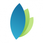 logo-like-v2