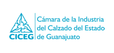 Camara de la industria de calzado del Estado de Guanajuato