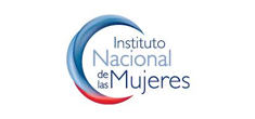 instituto nacional de mujeres