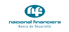 nacional financiera