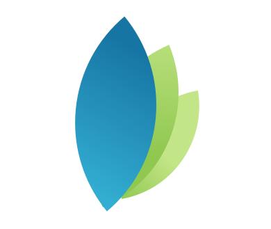 rsp-logo-like-v3