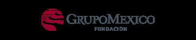 Fundación Grupo Mexico