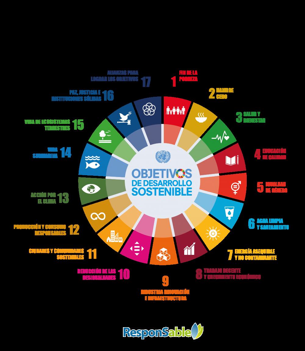 Reportar ODS Informes de sustentabilidad